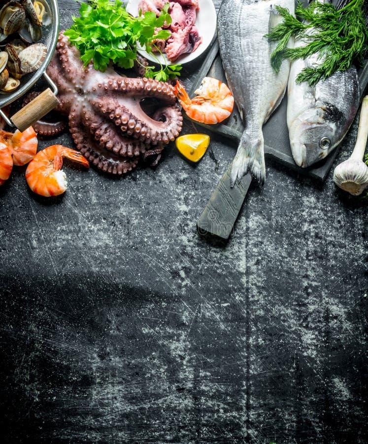 Assortiment van verse zeevruchten stock afbeelding