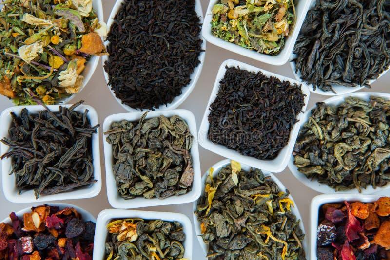 Assortimento di tè asciutto Vari generi di tè isolati su bianco Generi differenti di foglie di tè Composizione nel tè con il gene fotografia stock