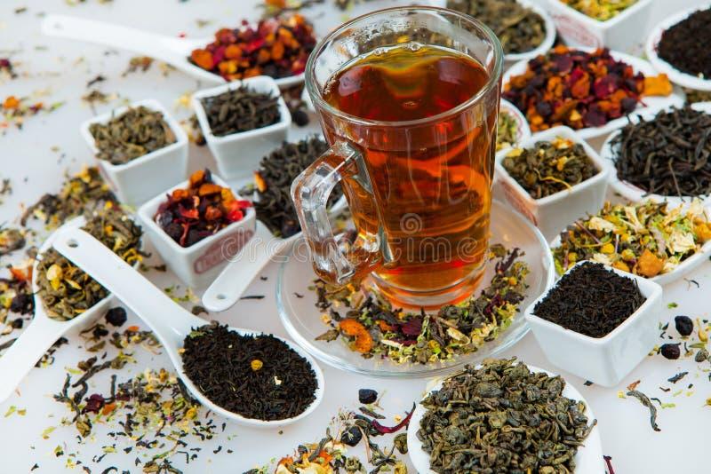 Assortimento di tè asciutto Vari generi di tè isolati su bianco Generi differenti di foglie di tè Composizione nel tè con il gene immagini stock