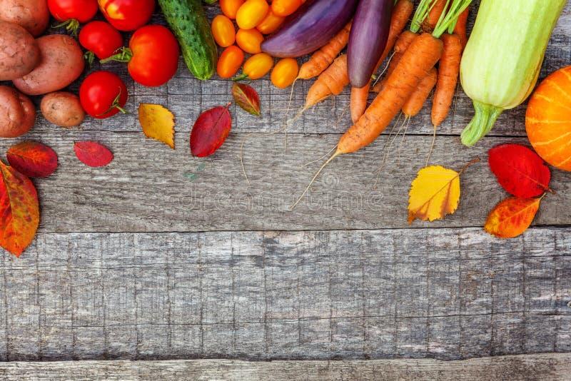 Assortiments verschillende verse organische groenten op de stijl houten achtergrond van het land stock foto's