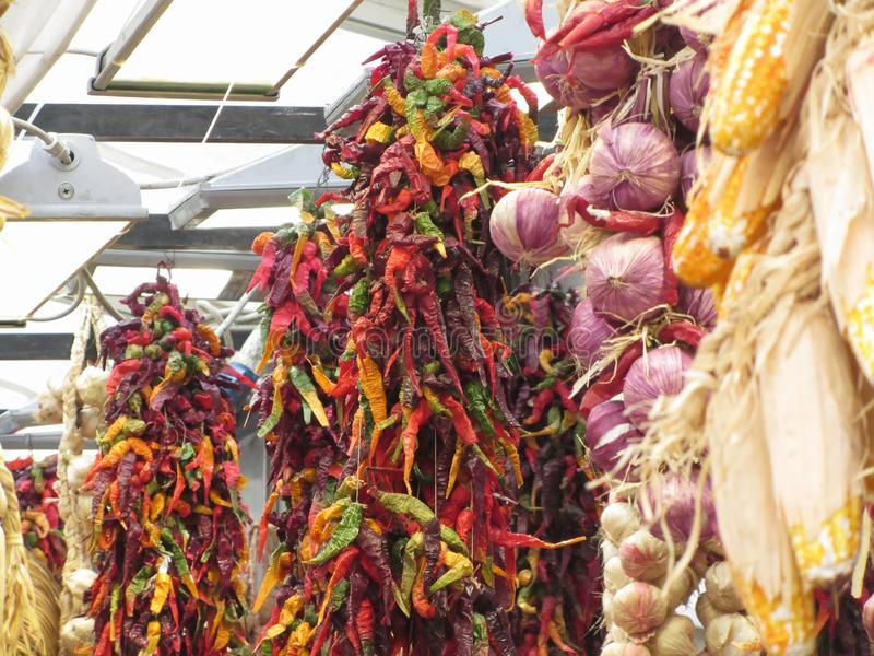 Assortment of colorful dried chili peppers, braid garlic, onions and corncob hanging outdoor . Tuscany, Italy stock photos
