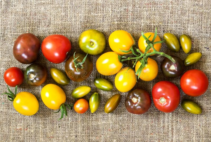 Assortment of colorful fresh tomatoes on sackcloth background. Flat lay, top view. Copy space stock photo