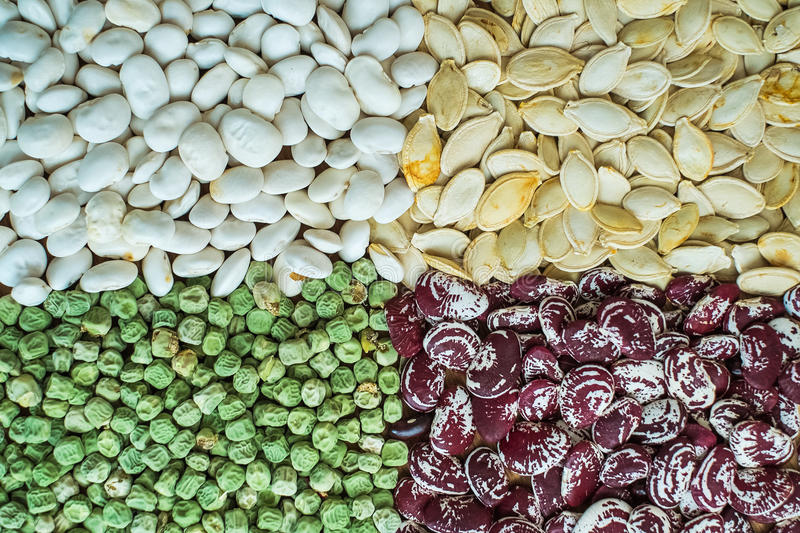 Assortment of different kind of seeds stock images