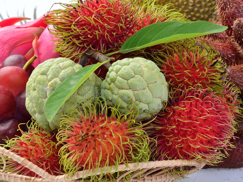 Assortment of exotic fruits. Thailand royalty free stock image
