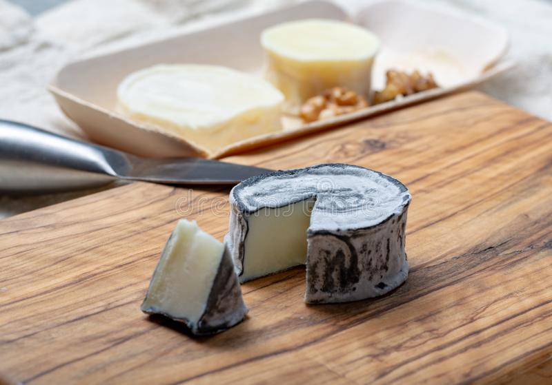 Assortment of French soft goat cheeses, Chevre Cendre, Cabecou Du Perigord and Chevre De Dordogne served on olive tree board royalty free stock photos