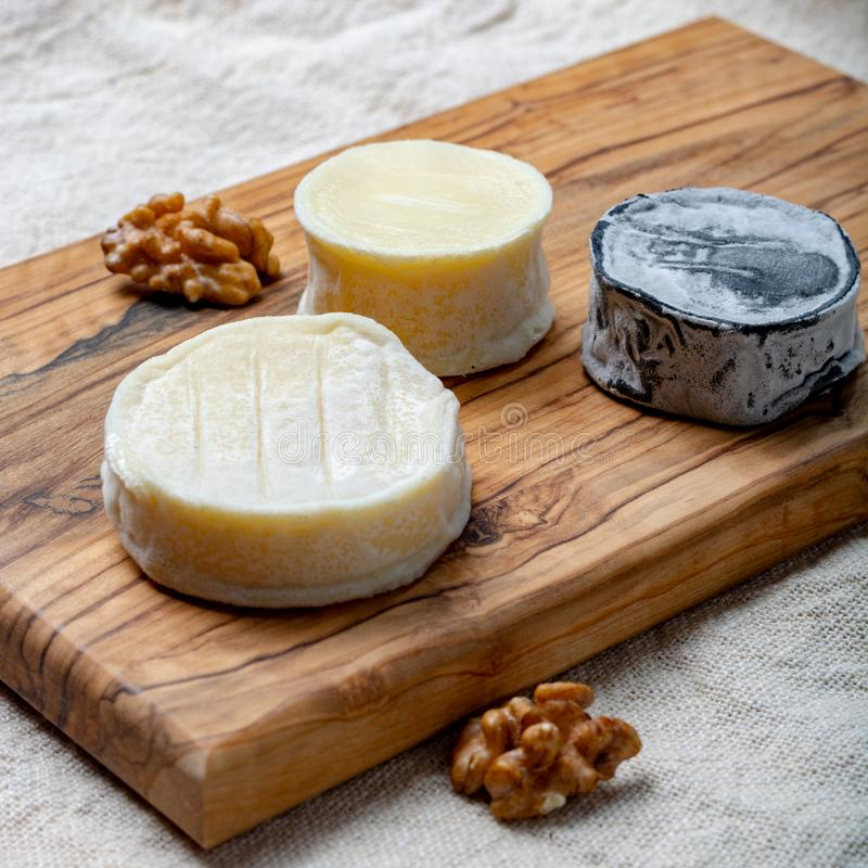 Assortment of French soft goat cheeses, Chevre Cendre, Cabecou Du Perigord and Chevre De Dordogne served on olive tree board stock photo