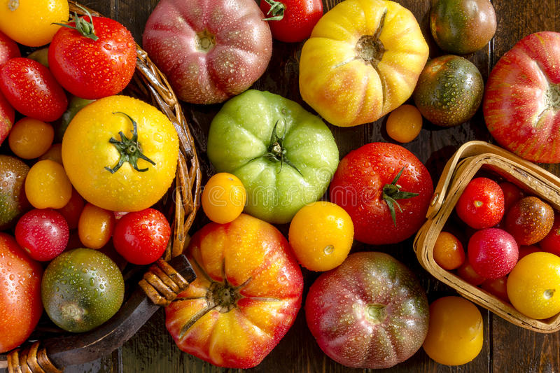 Assortment of Fresh Heirloom Tomatoes. Colorful assortment of fresh organic heirloom tomatoes sitting on wooden table stock images