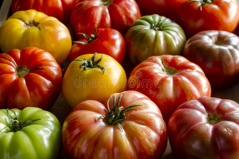 Assortment of Fresh Heirloom Tomatoes. Wooden box filled with fresh vine ripened heirloom tomatoes from farmers market stock images