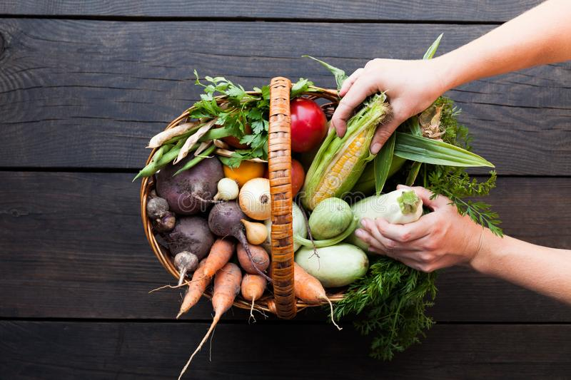 Assortment of fresh raw vegetables on a wooden background royalty free stock images
