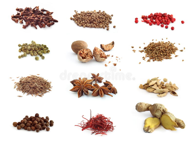Assortment of spices royalty free stock photography