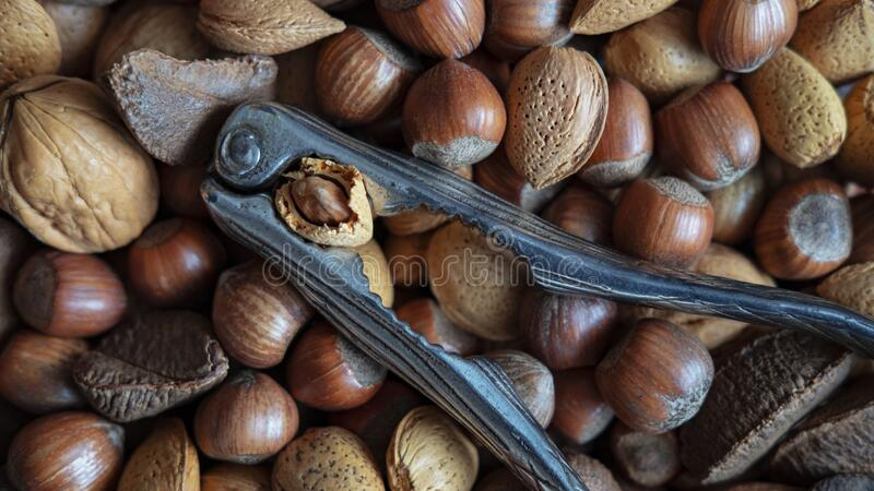 Assortment of whole nuts, walnuts, almonds, hazelnuts and Brazil nuts with nut cracker stock photography