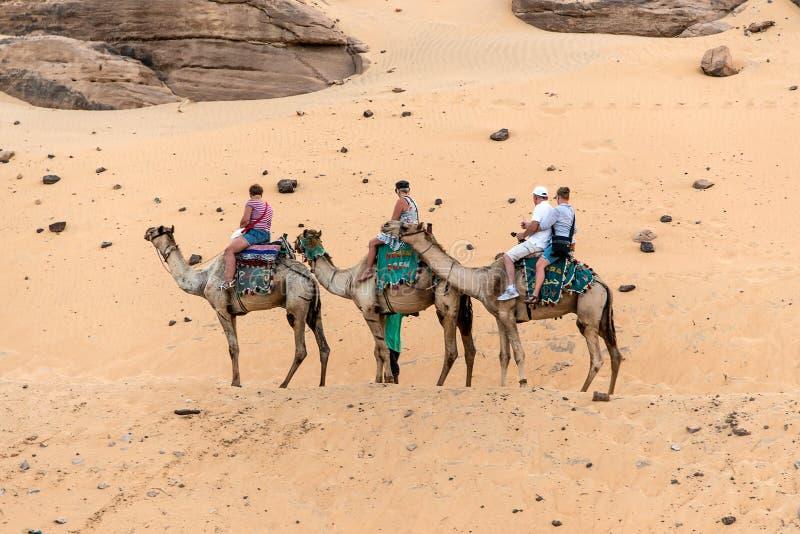 ASSUAN, ÄGYPTEN 18 05 2018 Touristen an Bord des Kamelausflugs zu Nubian-Dorf die West Bank des Flusses Nil in der Assuan-Region lizenzfreie stockbilder