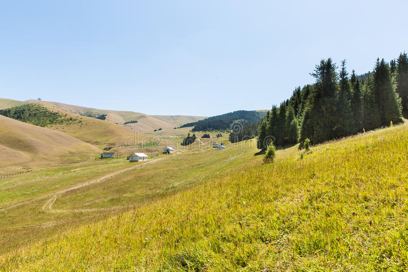 Assy plateau in Tien-Shan mountain in Almaty, Kazakhstan,Asia at summer. stock photos
