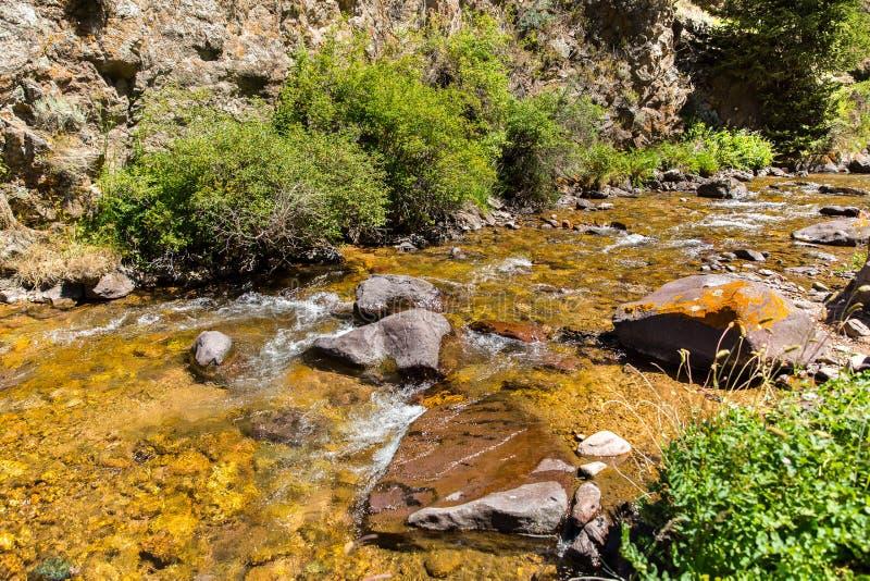 Assy plateau w shan górze w Almaty, Kazachstan, Azja obraz stock