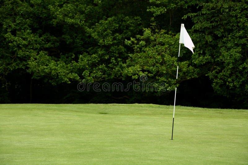 Download Asta de bandera del golf foto de archivo. Imagen de capacidad - 1275458