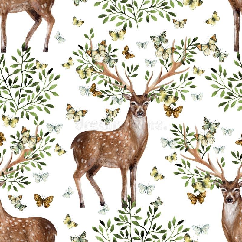 Astas pintadas a mano de los ciervos de la acuarela con las hojas, ramas, mariposa en el fondo blanco ilustración del vector