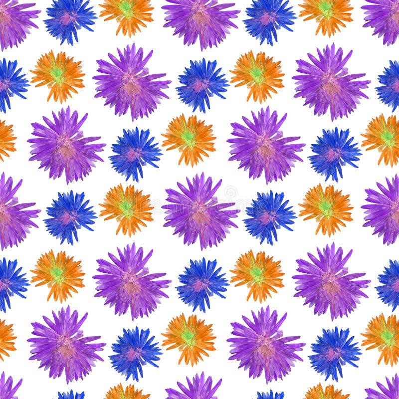 aster Bezszwowa deseniowa tekstura kwiaty Kwiecisty tło, p ilustracja wektor
