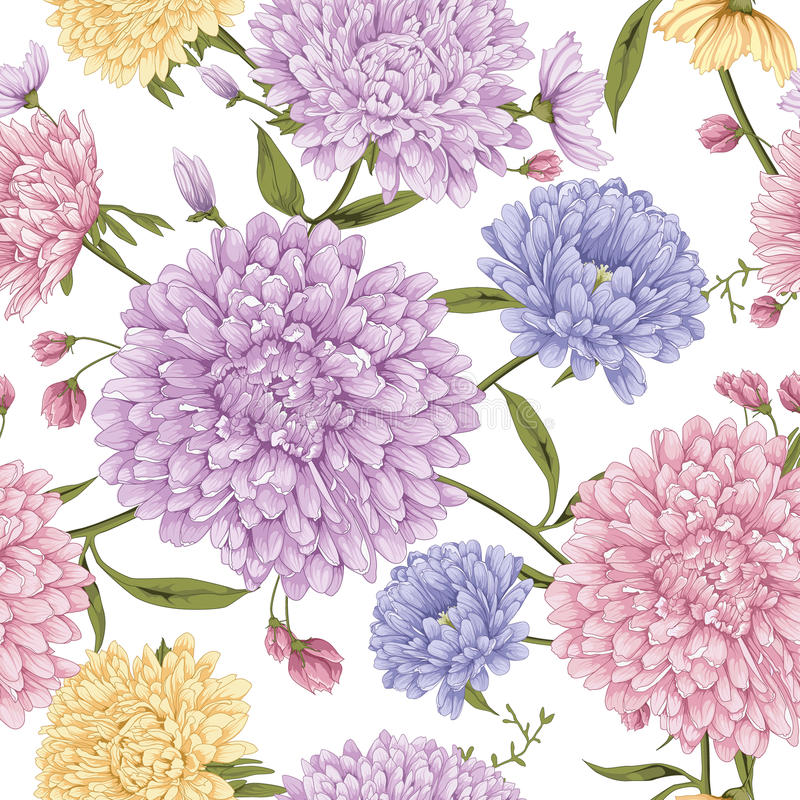 Aster flower with white background royalty free illustration
