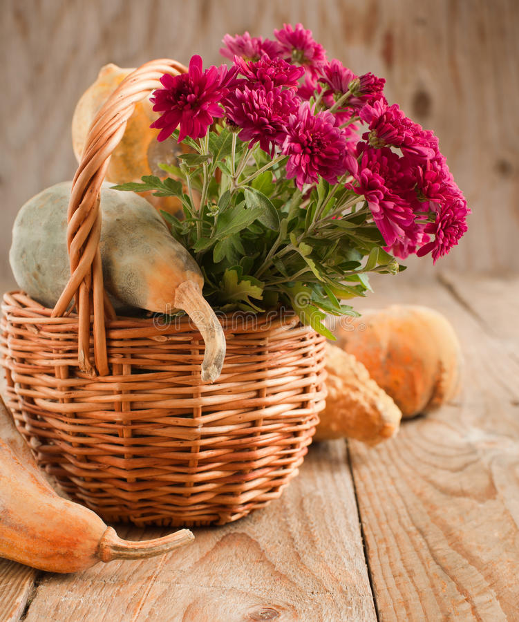 Free Aster Flowers And Pumpkins In Basket Stock Photos - 33149133