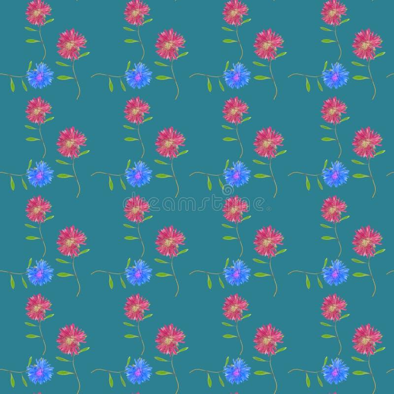 Aster, Michaelmas stokrotka Bezszwowa deseniowa tekstura kwiaty Kwiecisty tło, fotografia kolaż ilustracji