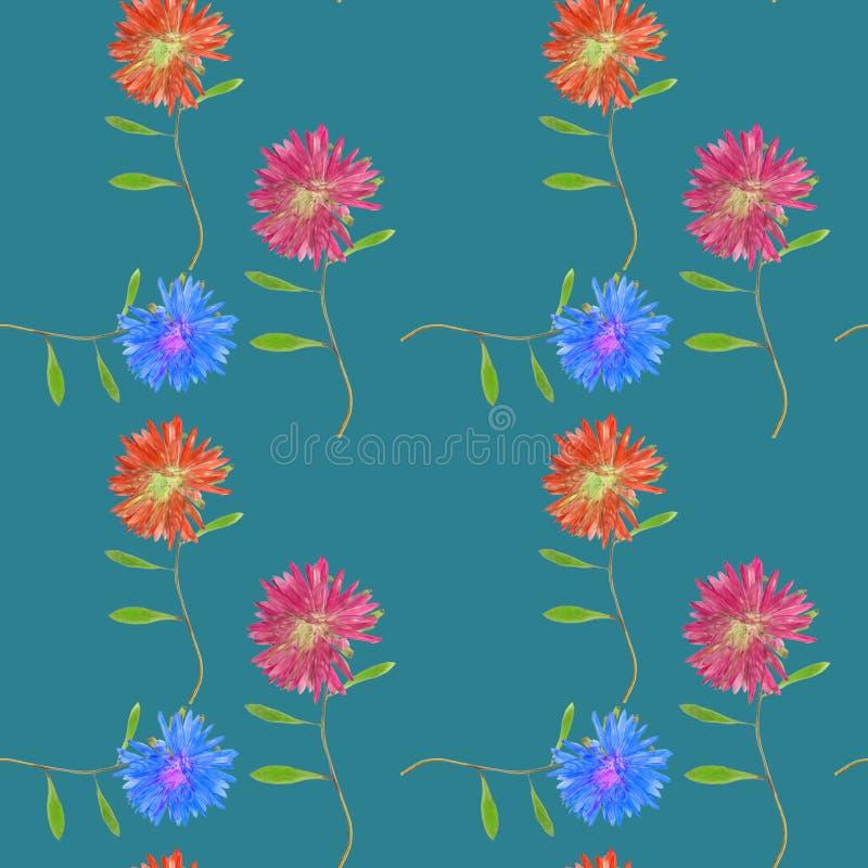 Aster, Michaelmas stokrotka Bezszwowa deseniowa tekstura kwiaty Kwiecisty tło, fotografia kolaż royalty ilustracja