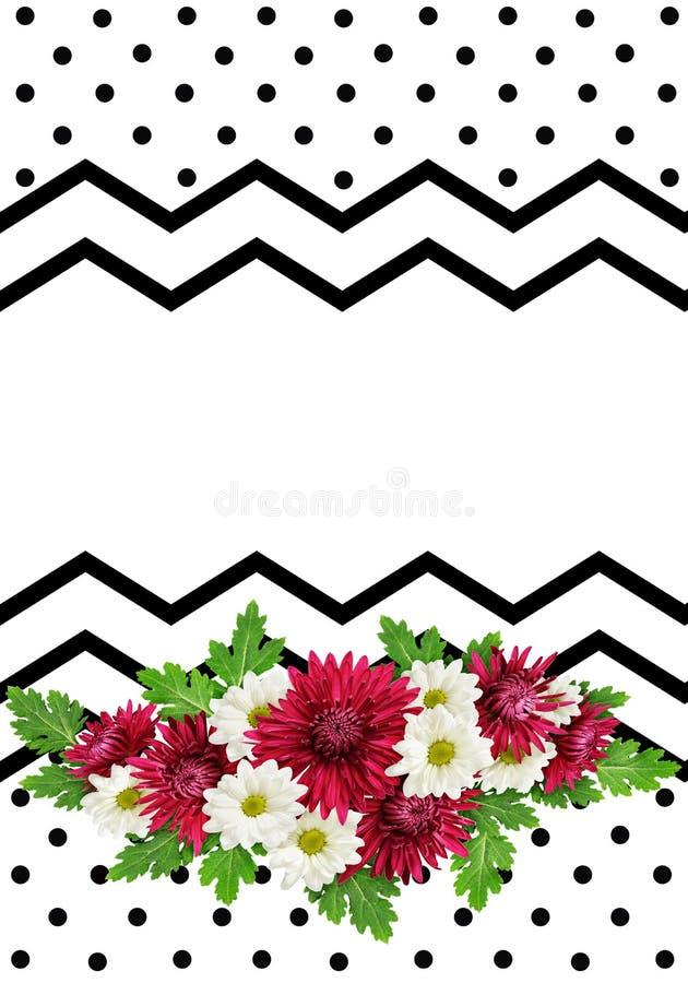 Asterbloemen op zwart-witte achtergrond vector illustratie