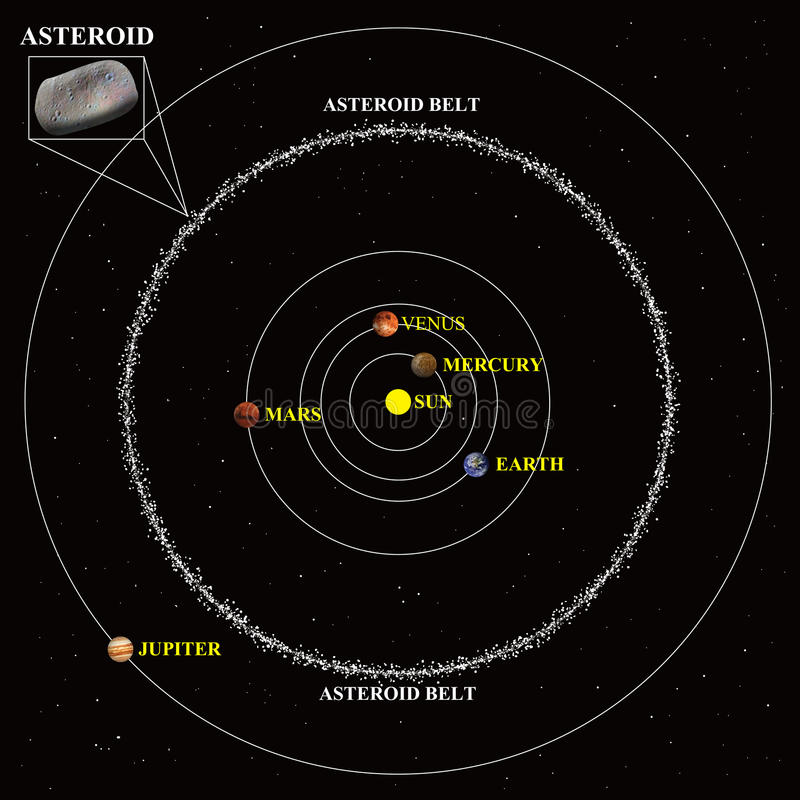 Asteroid belt diagram. A diagram of the Asteroid belt vector illustration