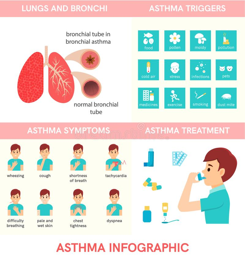Asthma infographic.Man use an inhaler. Vector illustration of lungs and bronchi. Flat icons of asthma triggers stock illustration