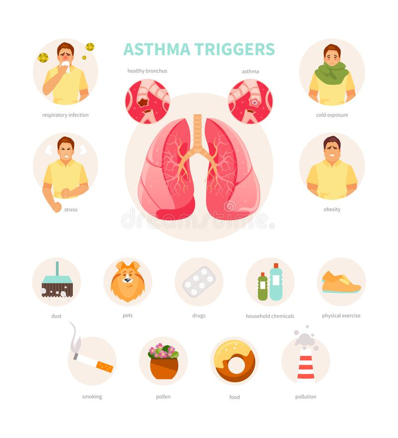 Asthma triggers vector stock illustration