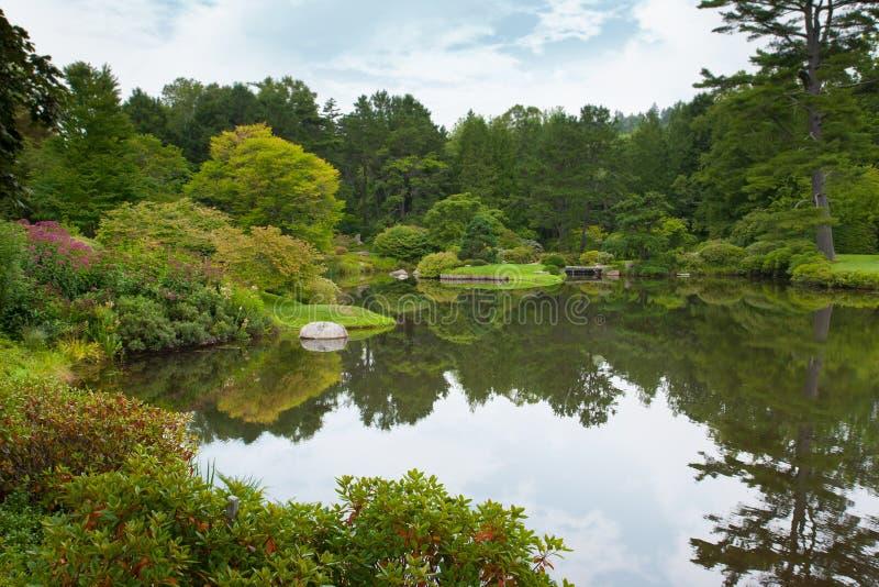 Asticou azalii ogród obrazy stock