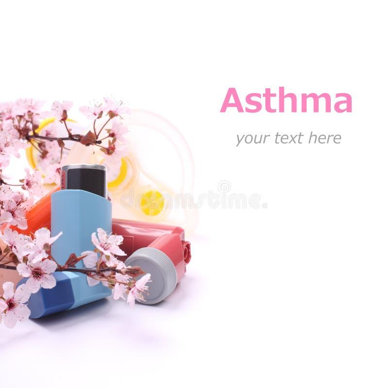 Astmainhalatorer med förlängningsröret för barn och att blomstra trädfilialer över vit royaltyfri fotografi