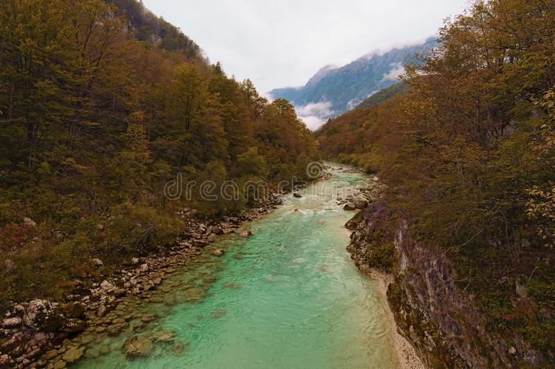Astonishing landscape view of alpine Soca River. Emerald green water flows between mountains with dense forest. stock images