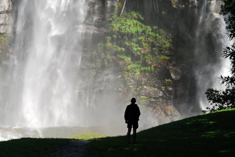 Download Astonishing waterfall stock photo. Image of environment - 11454048