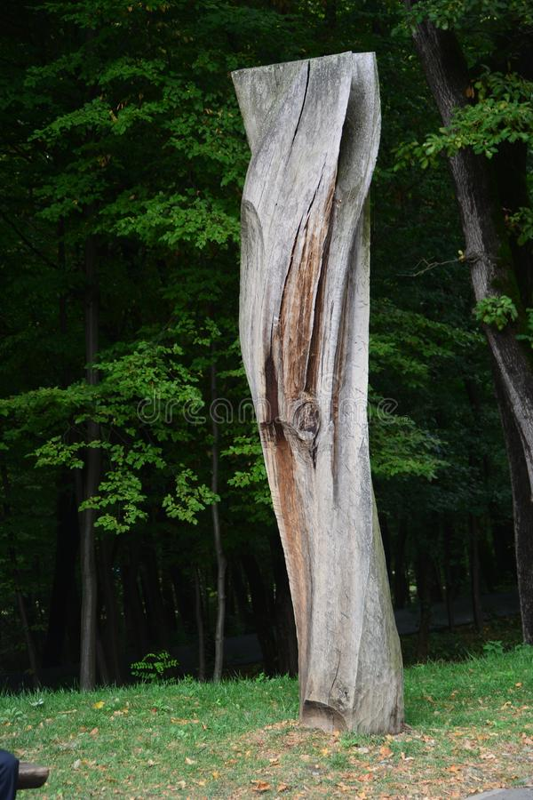 trunk of a tree at open air Museum royalty free stock photography