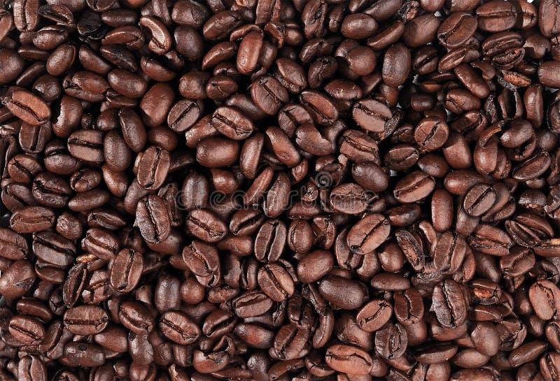 astract καφές κινηματογραφήσεων σε πρώτο πλάνο φασολιών ανασκόπησης στοκ φωτογραφία με δικαίωμα ελεύθερης χρήσης