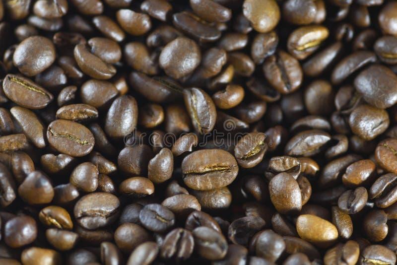 astract fasoli t?a zbli?enia kawy kawa piec fasoli t?o fotografia royalty free