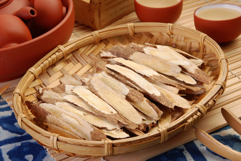 Astragalus root royalty free stock photos