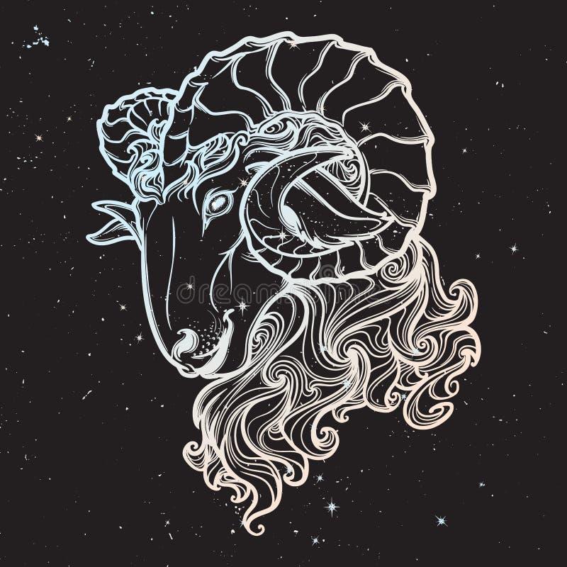 Astrologischer Stier lokalisiert auf sternenklarem Himmelhintergrund lizenzfreie abbildung