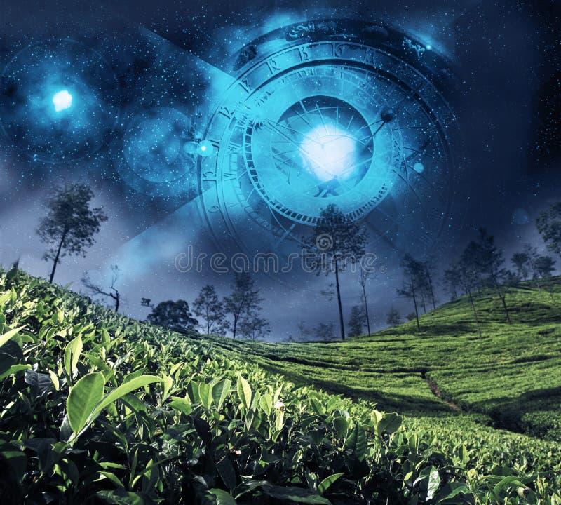 Astrologizodiak på natthimlen arkivbild