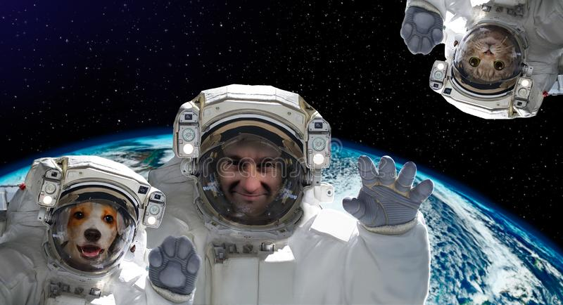 Astronauta con un perro y un gato en el fondo del globo imágenes de archivo libres de regalías