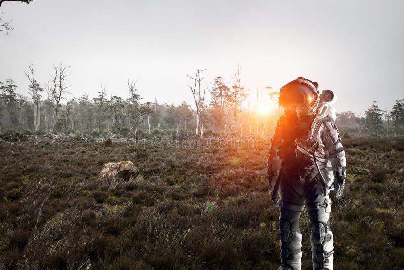 Astronauta in foresta fotografia stock libera da diritti