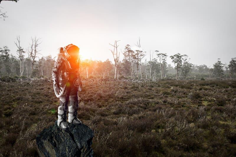 Astronauta in foresta fotografie stock
