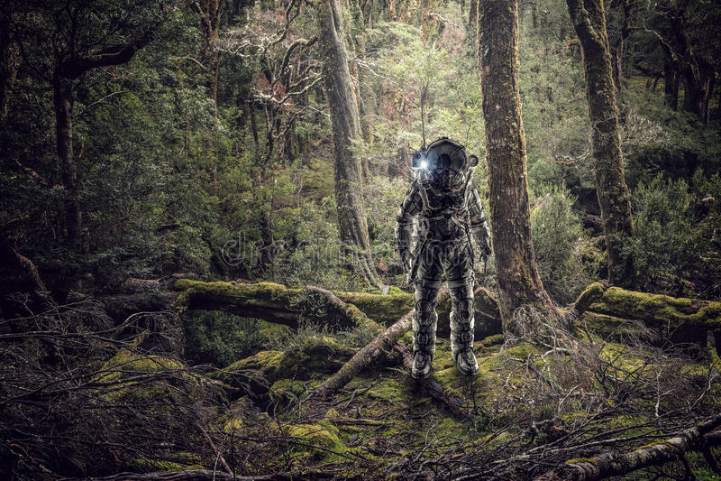Astronauta in foresta immagine stock libera da diritti