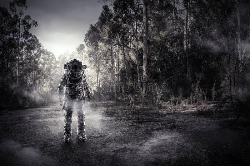 Astronauta in foresta fotografia stock