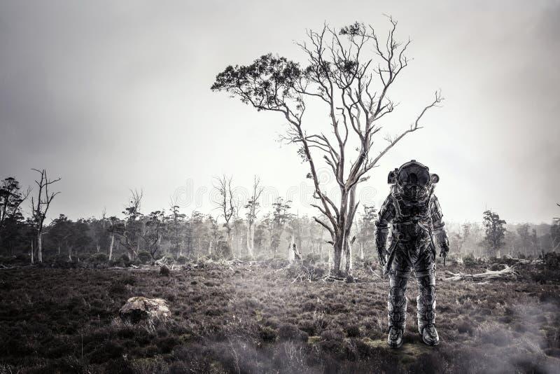 Astronauta in foresta immagini stock