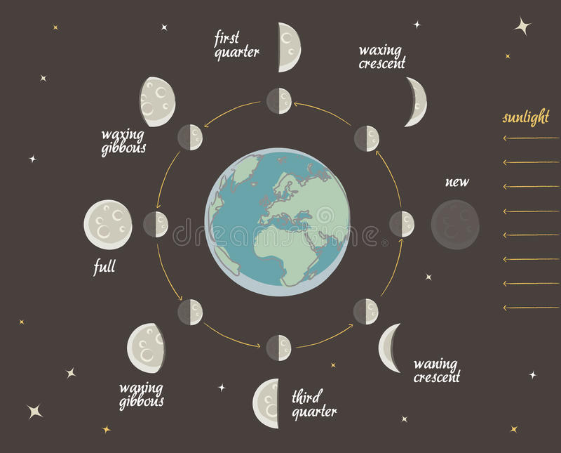 Astronomy lesson: Moon phases vector. Illustration of the Lunar phases + vector eps file