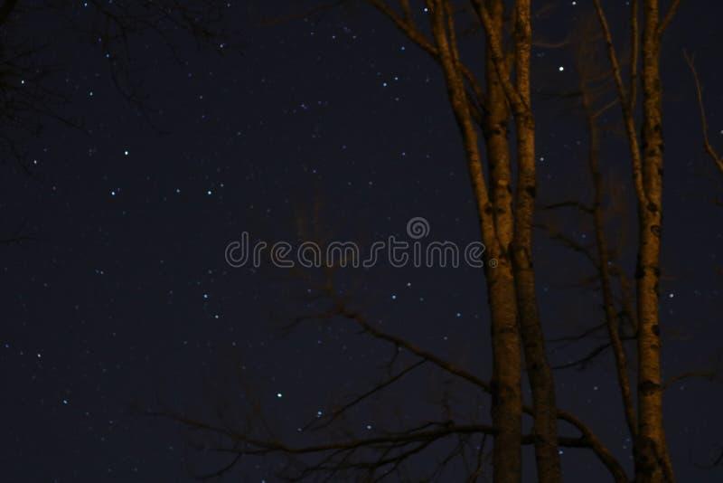 Astrophotographysterren in de nachthemel royalty-vrije stock afbeelding