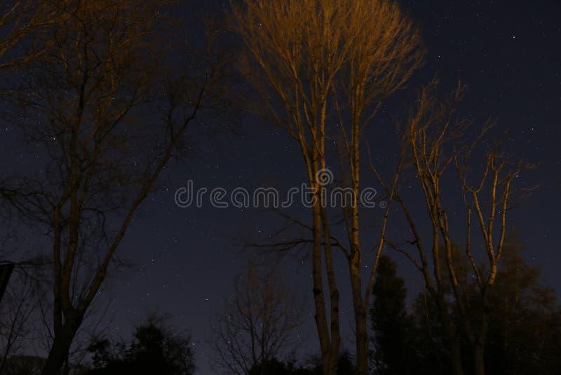 Astrophotographysterren in de nachthemel royalty-vrije stock foto's