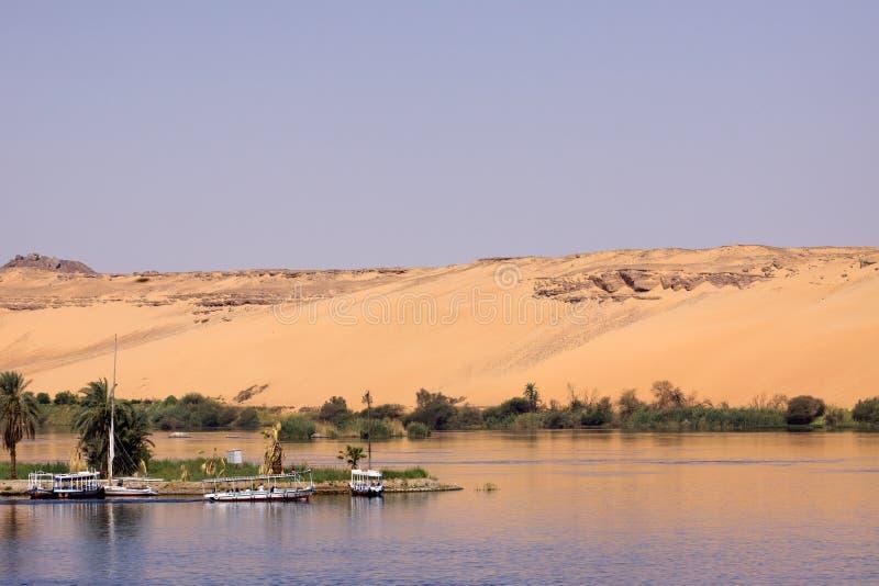 aswan royaltyfri foto