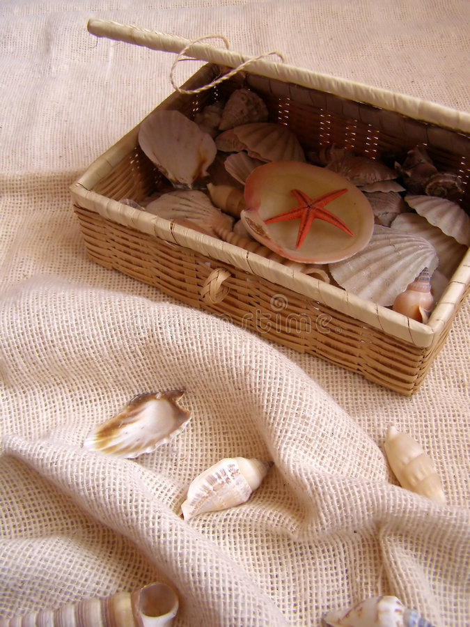 Ataúd con los sea-shells imagenes de archivo